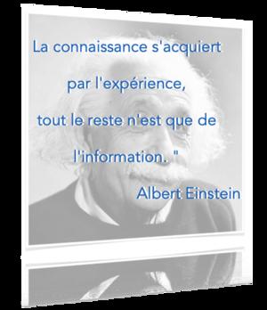 La connaissance s'acquiert par l'expérience, tout le reste n'est que de l'information. Albert Einstein